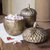 Harvest Acorn Canisters