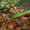 Ames Dual Tine Poly Leaf Rake -  45% Faster
