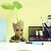 Baby Groot Mini Flower Pot