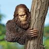 Bigfoot Tree Sculpture
