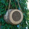 Birch Bee Log