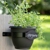 Bloem Herb Trio - Vertical Three Tier Wall Planter
