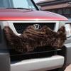 Carstache - Furry Car Mustache