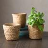 Cement Basket Planters