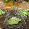 Chicken Wire Plant Cloche