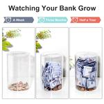 Clear Piggy Bank For Adults - Break to Open!