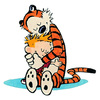 The Complete Calvin and Hobbes by Bill Watterson