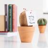 Cork Cactus - Desktop Organizer with Push-Pins Spikes