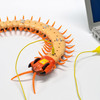Creepy-Crawly Remote Control Centipede