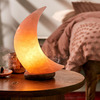 Crescent Moon Himalayan Salt Lamp