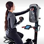 LifeSpan Fitness Cycle Boxer - Upright Exercise Bike with Interactive Boxing Punch Pad