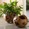 Distressed Teak Wood Spherical Planters / Display Bowls