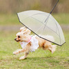 Dog Umbrella With Built-In Leash