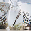 EcoSphere - A Living World in Your Hands