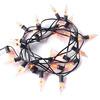 Flicker Flame String Lights