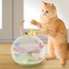 Flitter Fly - Swirling Cat Tornado Toy