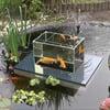 Flying Aquarium - Above The Water Floating Koi / Goldfish Observation Tank