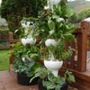 Foody 8 Vertical Hydroponic Garden Tower