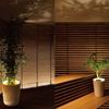 Forestarium - Illuminated Planter