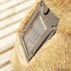 Garden Critter Solar Lights