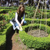 Garden Groom Garden Barber - Hedge and Shrub Sculptor