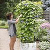 Gardener's Revolution Self-Watering Vine Planter