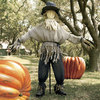 Giant Lifesized Scarecrow