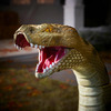 Giant Outdoor Anaconda