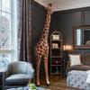Gigantic Giraffe Emerging From the Wall Statue