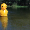 Gigantic Inflatable Rubber Ducky