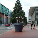 GIO MONSTER - This Gigantic Flower Pot Stands Over 6 Feet Tall!