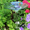 Glass Bird Bath - Welcomes Birds and Butterflies
