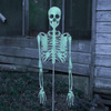 Glow-in-the-Dark Skeleton Yard Stake
