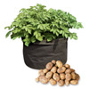 Grow Bags - Tomatoes, Peppers, Herbs and Potatoes