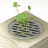 Haisui Water Drain Cover Planter