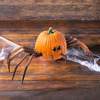 Halloween Spider Pumpkin Appendages