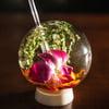 Halm Glasses - Upside-Down Drinking Spheres