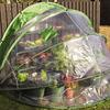 Horti Hood Pop-Up Greenhouse