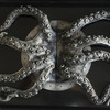 Huge Octopus Arms Door Handles