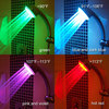 HydroBright LED Illuminated Color Changing Showerhead