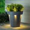 Illuminated Solar Light LED Planter