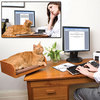 Kit-In Box - Desktop Cat Bed