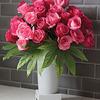 Kulvase - Life Extending Flower Vase