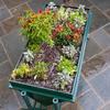 LGarden - Elevated Gardening System