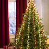 Lighted Six-String Cascade Ornament Garland