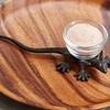 Lizard Salt Pincher