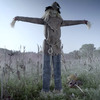 Looming Strawman - Scary Lifesize Animatronic Lunging Scarecrow