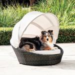 Luxurious Outdoor Dog Bed With Canopy