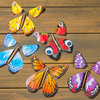 Magic Butterfly - Wind-Up Flying Butterflies For Cards and Books