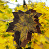 Maple Leaf Hanging Bird Feeder